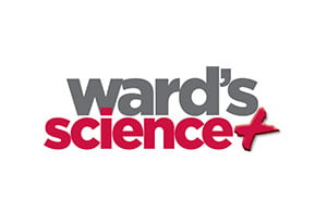 ward-science